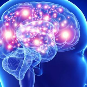 Area Neurologica